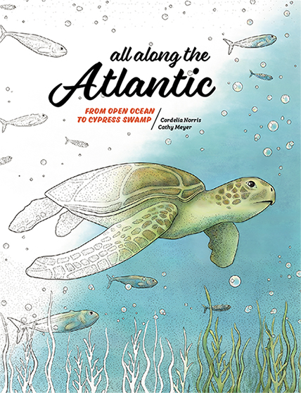 Cover image with a sea turtle, sea grass and fish