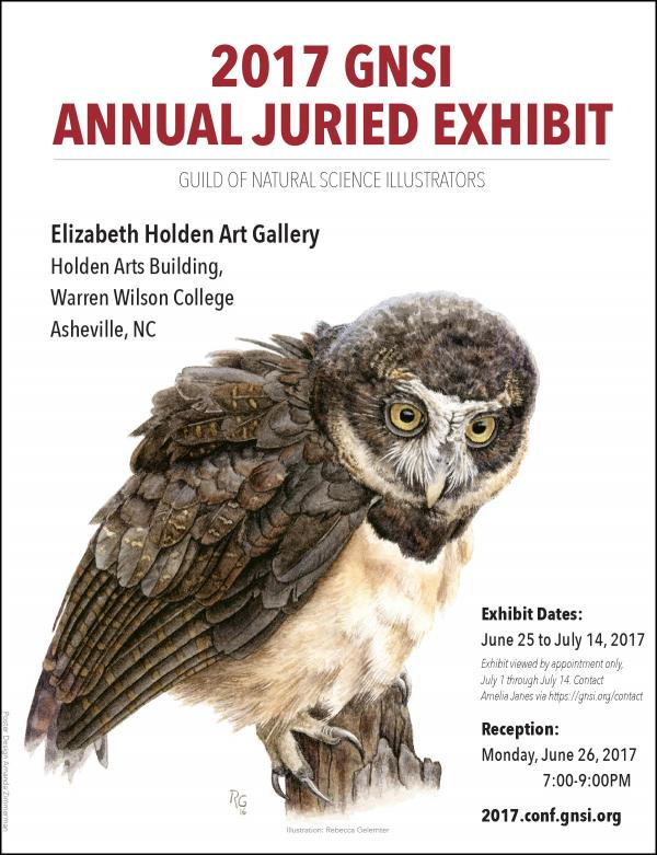 2017 GNSI Annual Juried Member Exhibit Poster